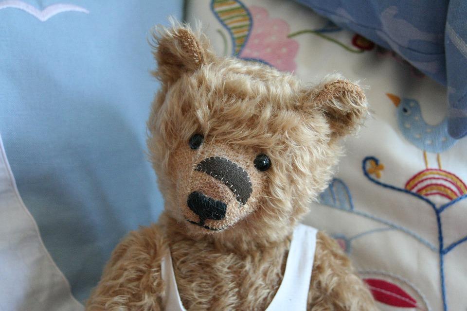 Teddy, Teddy Bear, Toys, Stuffed Animal