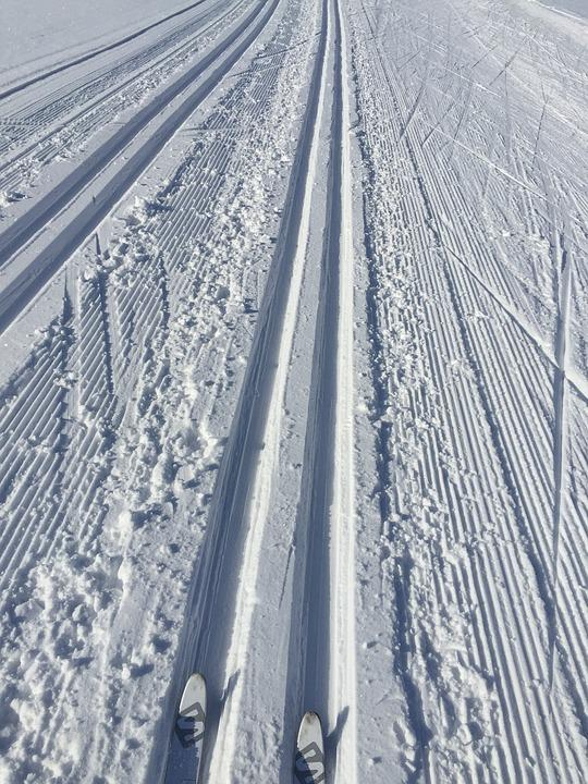 Snow, Trail, Cross Country Skiing, Winter Sports, Trace
