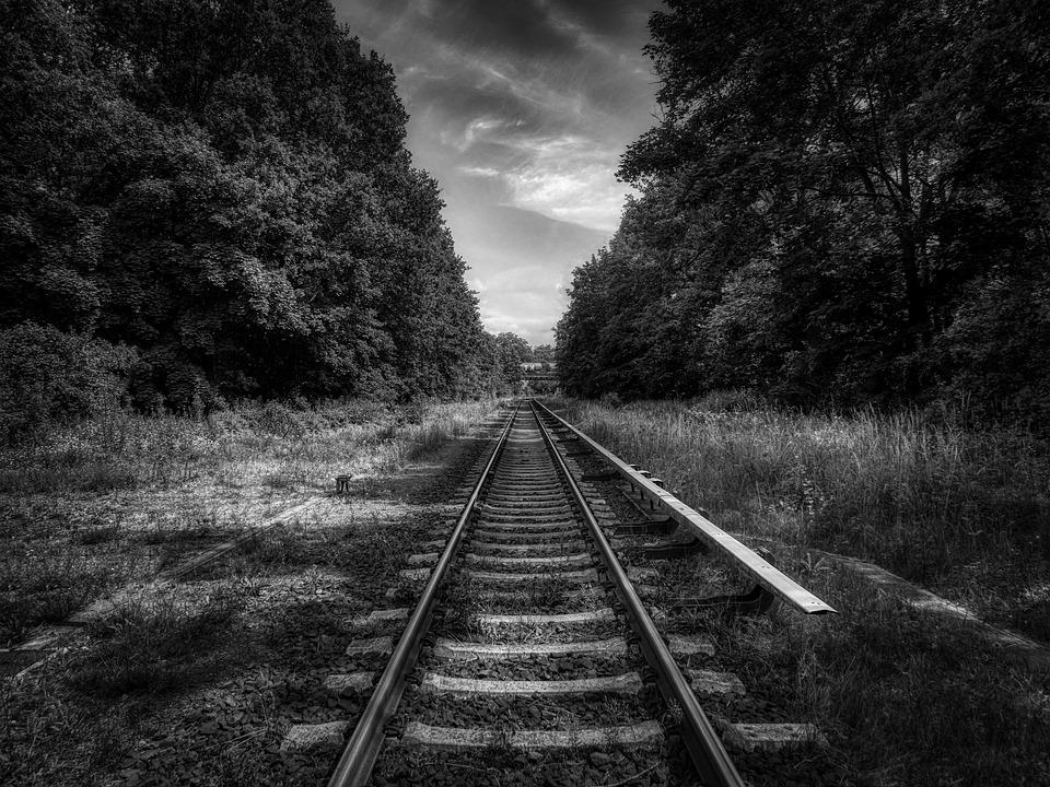 Rail, Tracks, Trees, Railroad Tracks, Railroad, Railway