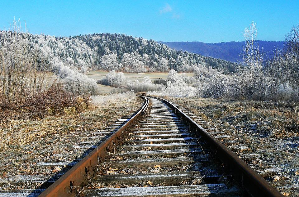 Tracks, Winter, Frost, Nature, Snow, White, Tops