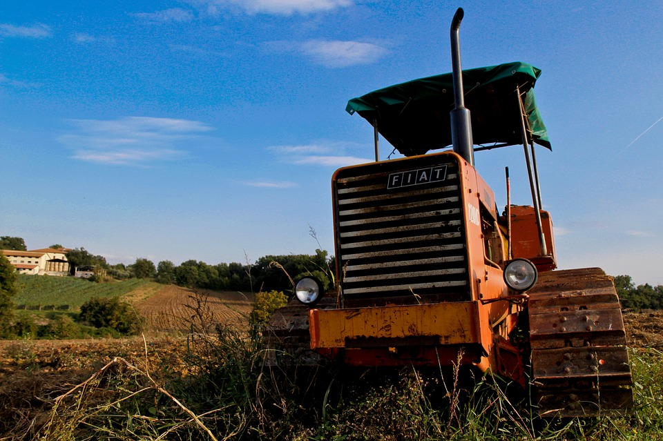 Tractor, Fiat, Agriculture, Tracked, Summer, Landscape