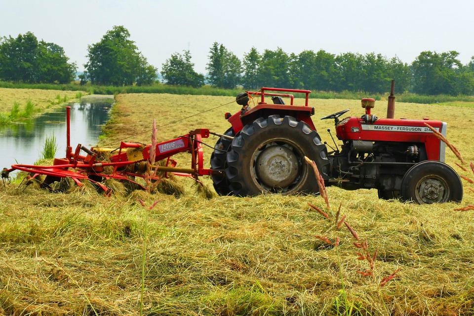 Tractor, Mowing The Grass, Grass Times, Drying, Pasture
