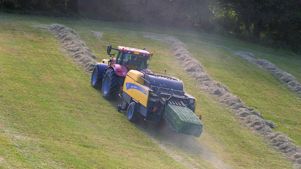 Tractor, Field, Slope, Boot, Hay, Work, Agriculture