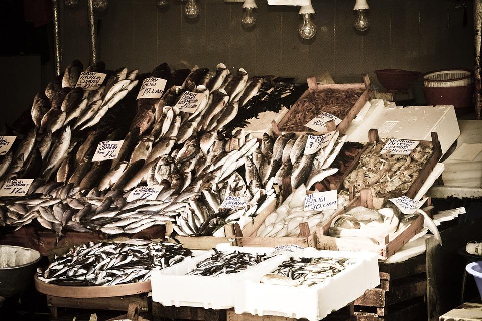 Istanbul, Market, Turkey, Bazaar, Seafood, Fish, Trade