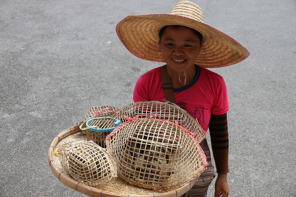 Thailand, Woman, Birds, Tradition, Asian, Seller