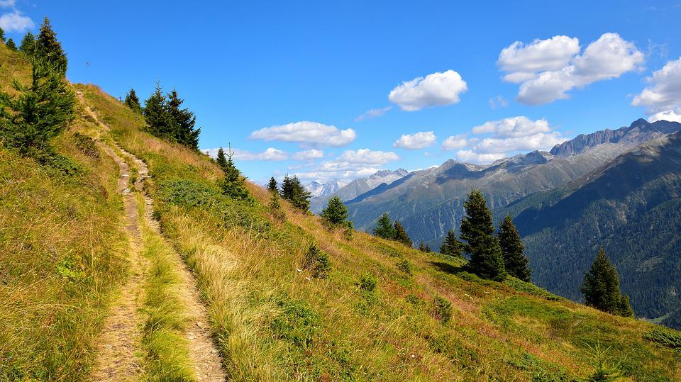 Trail, Mountains, Landscape, Away, View, Trees, Alpine