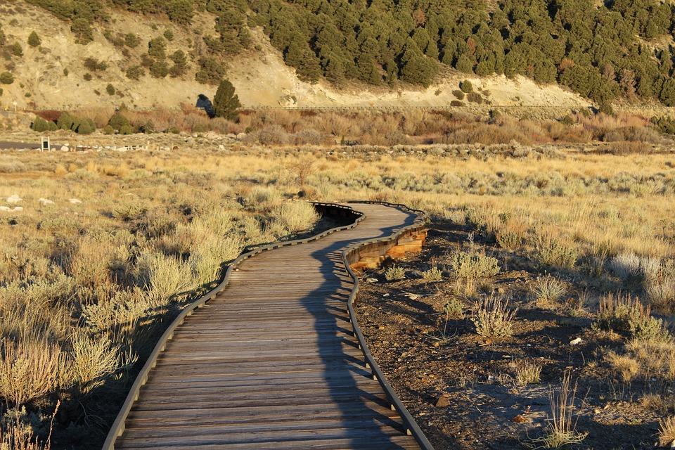 Trail, Pier, Hike, Outdoor, Path, Park, Lake, Usa