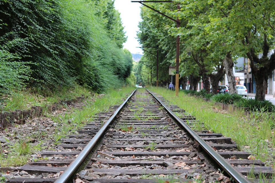 Trail, Green, Train, Travel, Distance, Nature, Path