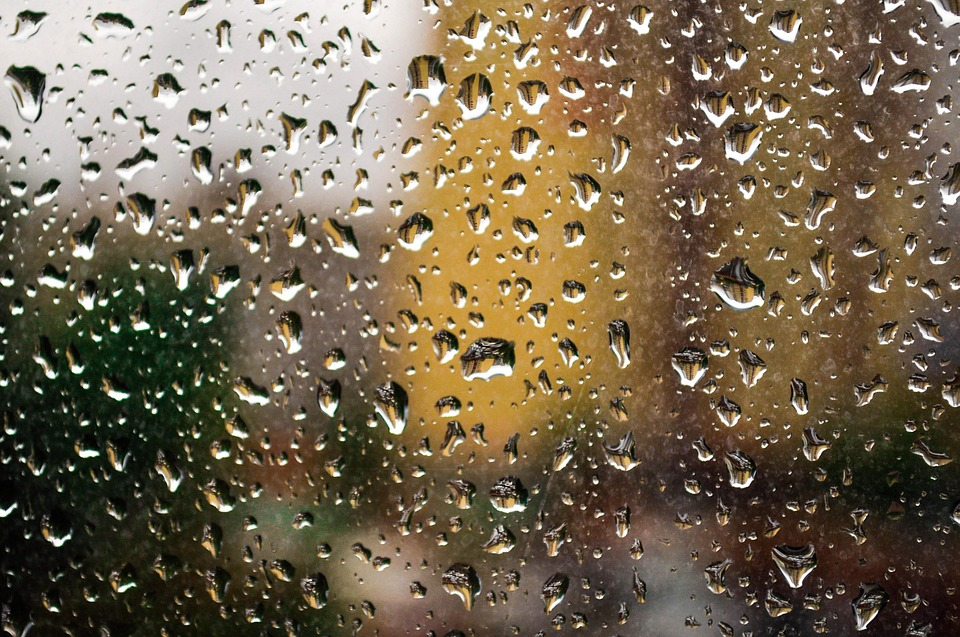 Rain, Window, Glass, Wet, Rain Drops, Drop, Transparent
