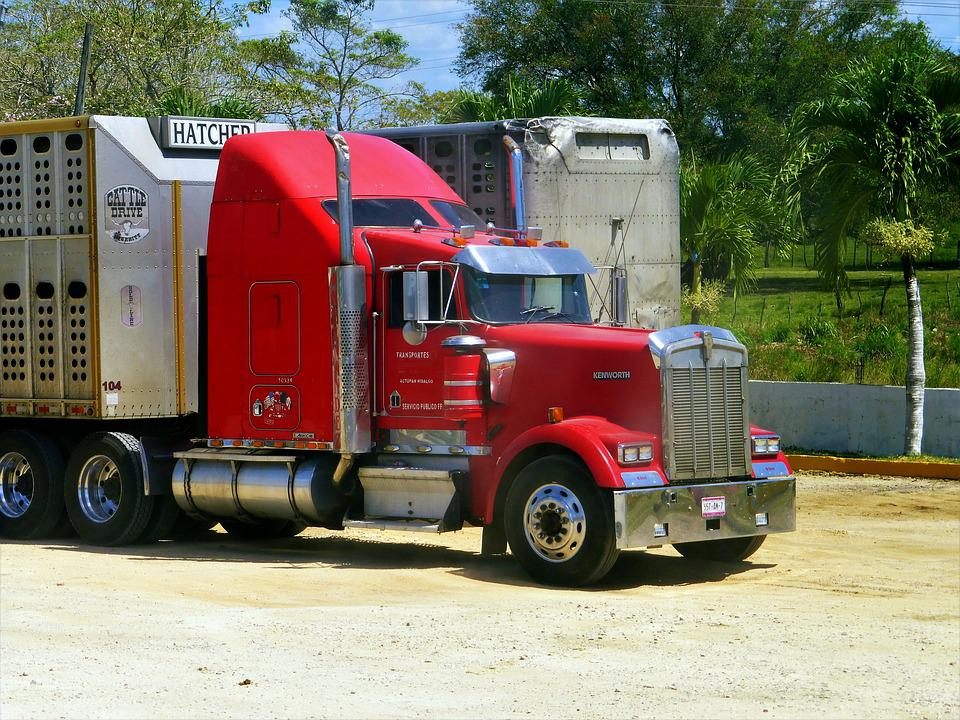 Truck, American, Vehicle, Transport, Truck Truck