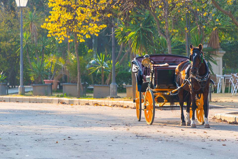 Horse, Carriage, Transport, Old, Sevilla, Coach, Cart