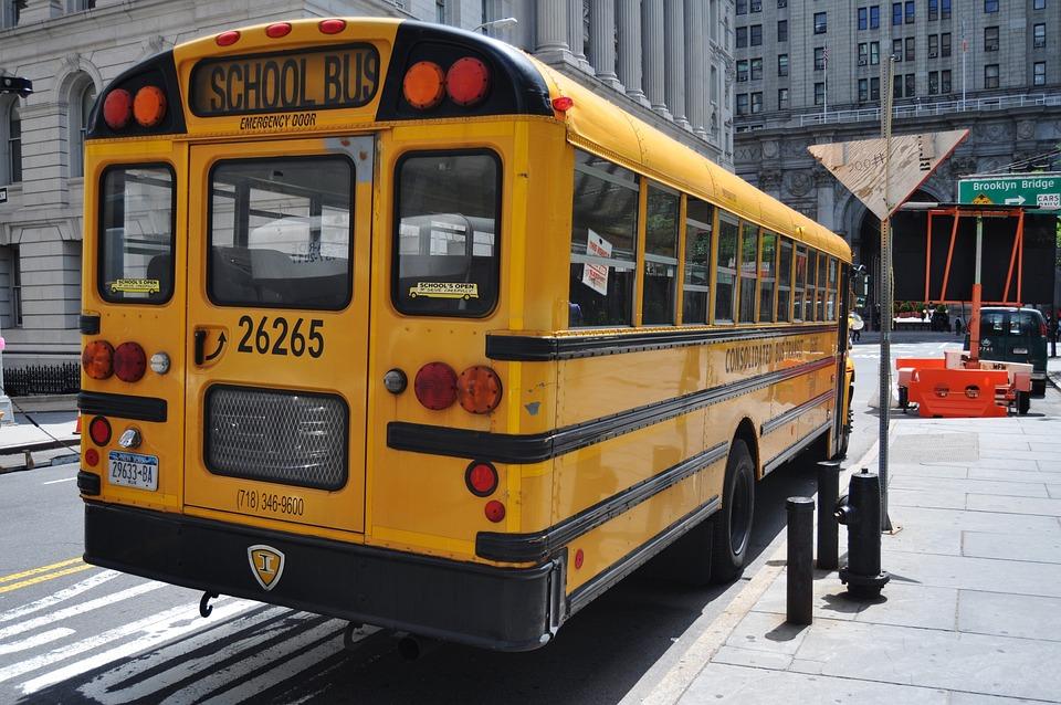 Bus, State, Transportation, Transport, Travel, Public