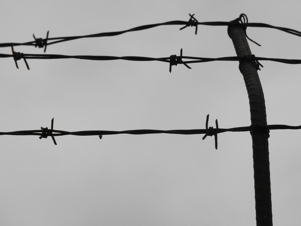 Wires, Prison, Iron, Trap, Wall