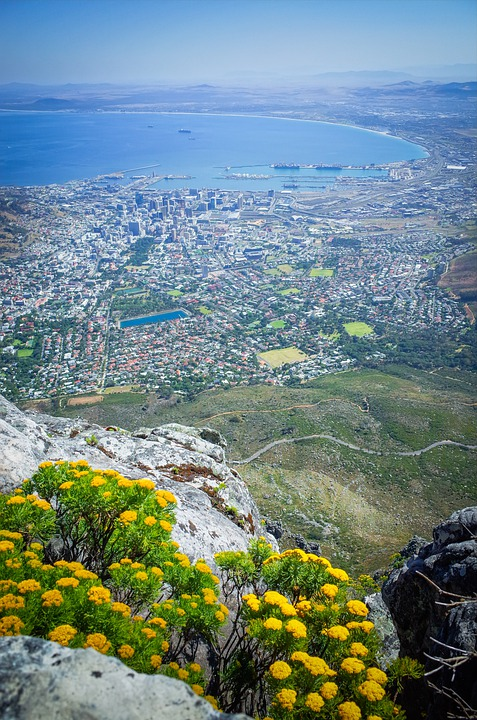 South Africa, Africa, Cape Town, Nature, Travel