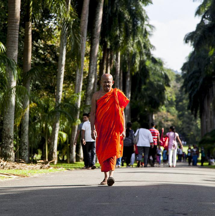 Monk, Buddhist, Asia, Buddhism, Travel