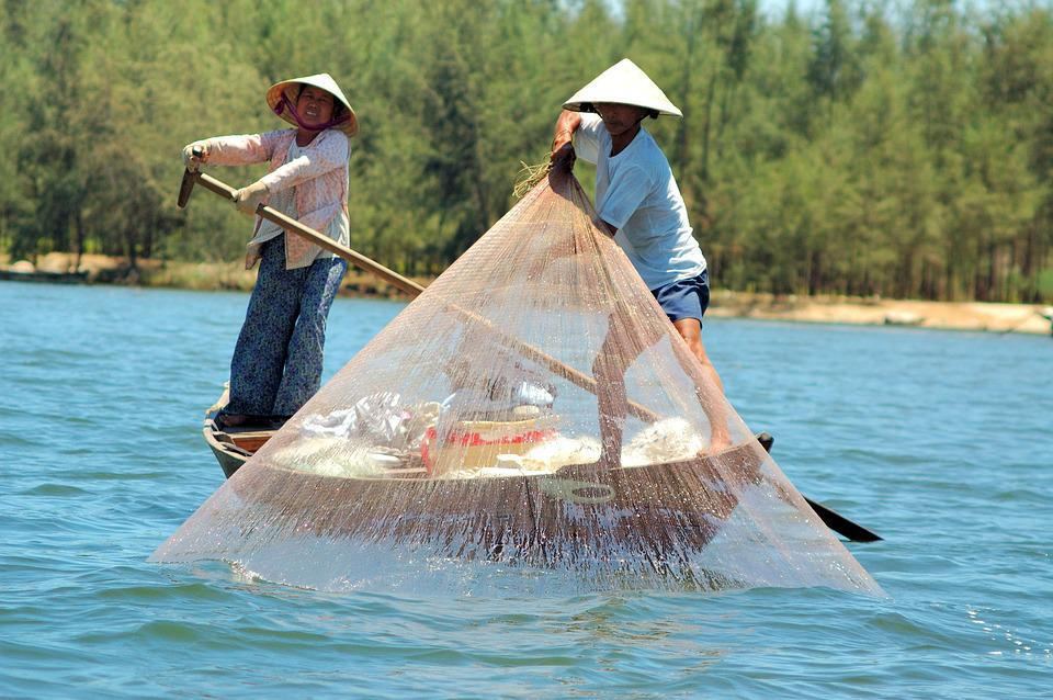 Fishing, Vietnam, Asia, Travel, Lake, Boat, Work
