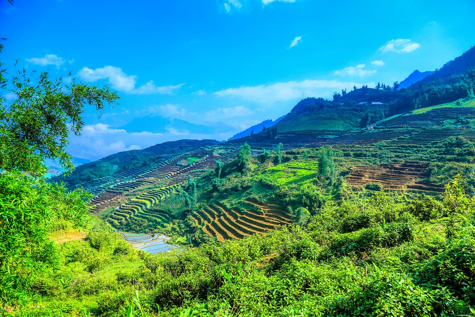 Vietnam, The Mountains, Travel, Experience, Terraces