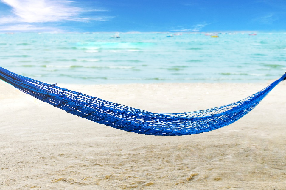 Palm, Nature, Travel, Hammock, Paradise, Beach, Ocean