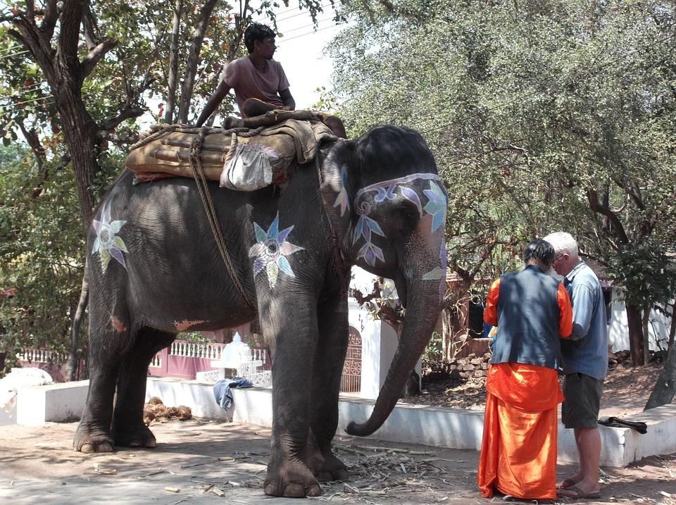 Travel, Mag, India, Tourist, Transport