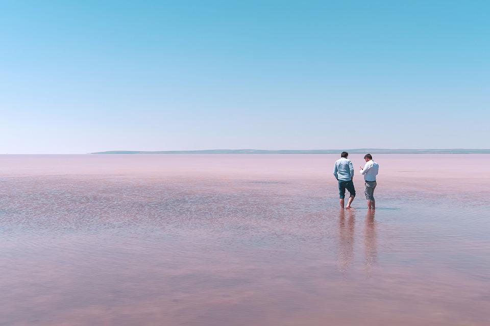 Lake, Travel, Man, Water, Conversation, Pink, Nature