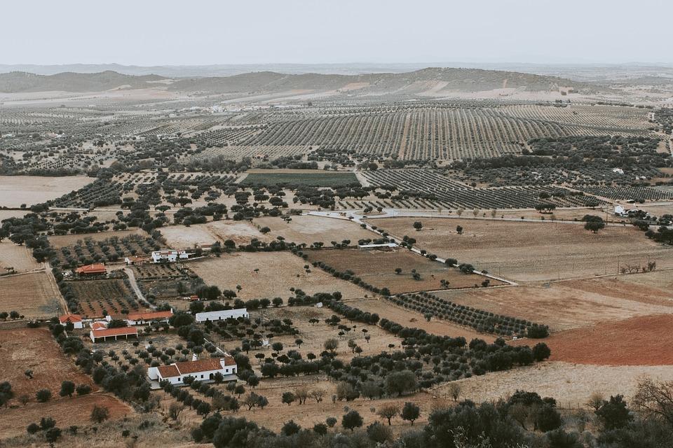 Monsaraz, Portugal, Landscape, Travel, Europe, Farming