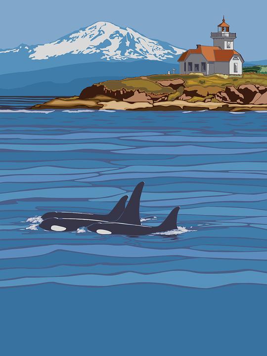 Washington State, Travel, Poster, Landscape, Wilderness