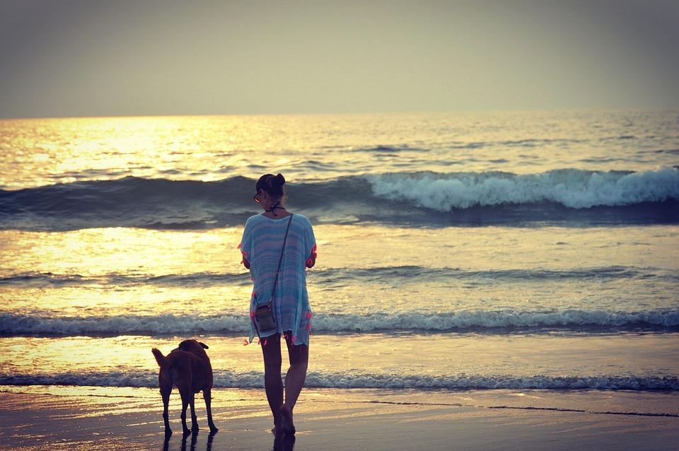 Travel, Travelphotography, Goa, Photography, Beach, Dog