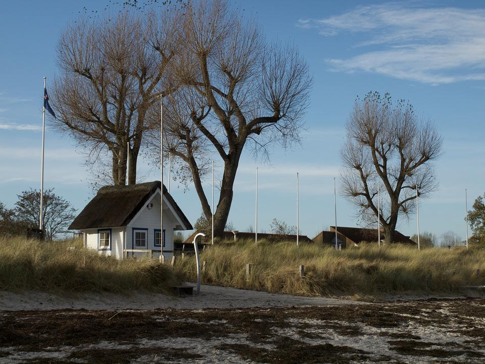 Stand, Water, Travemünde, Home, Tree, Nature, Walk