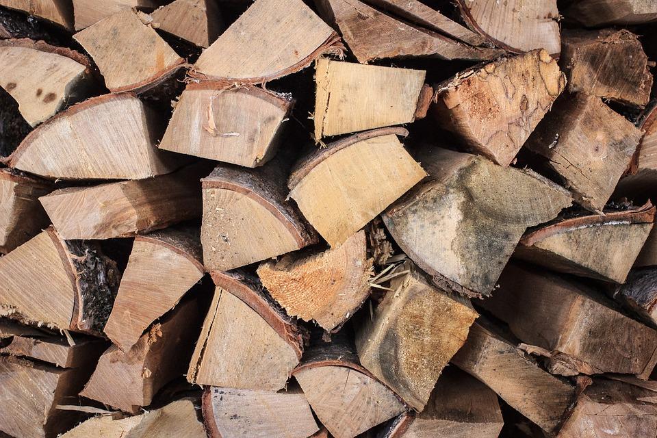 Tree, Wood, Billet, Firewood, Nature, Dacha, Village