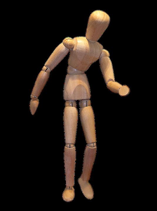 Model, Doll, Tree, Body, Set, Wooden Doll