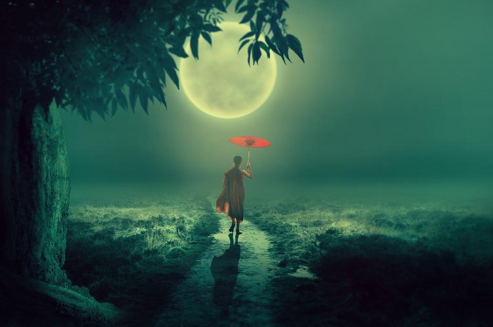 Tree, Moon, Lane, Monk, Screen, Moonlight, Boy, Away
