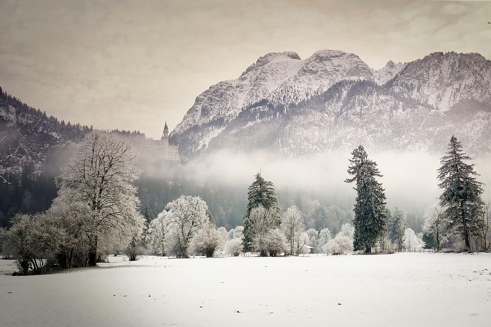 Snow, Winter, Mountain, Tree, Cold, Castle, Kristin