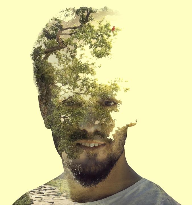 Double Exposure, Photoshop, Layer, Tree, Nature
