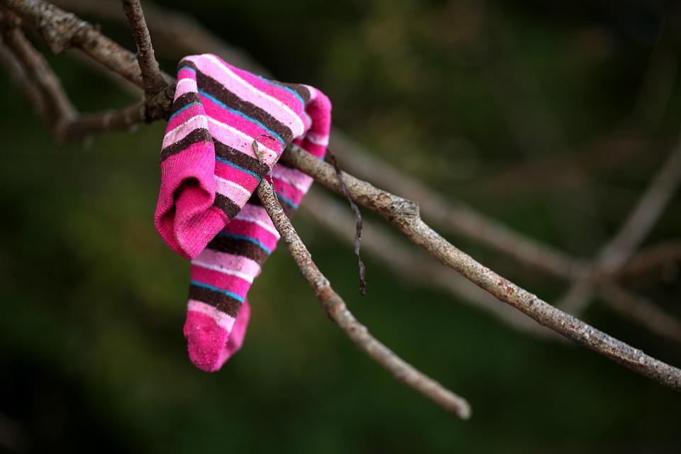 Flotsam, Sock, Road, Lost, Tree, Garment