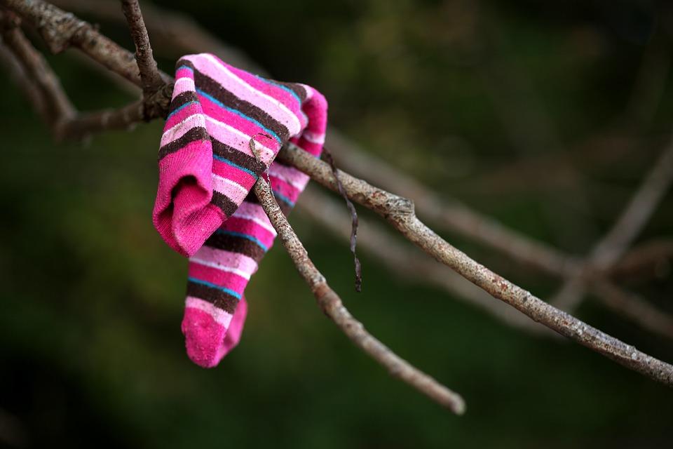 Flotsam, Sock, Road, Lost, Tree, Garment
