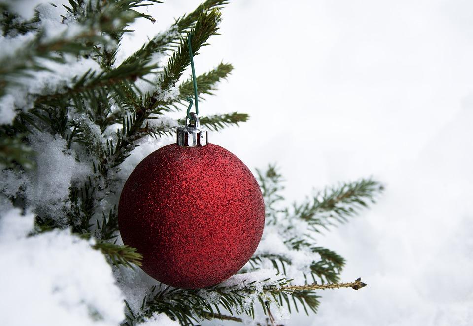 Christmas, Winter, Tree, Gran