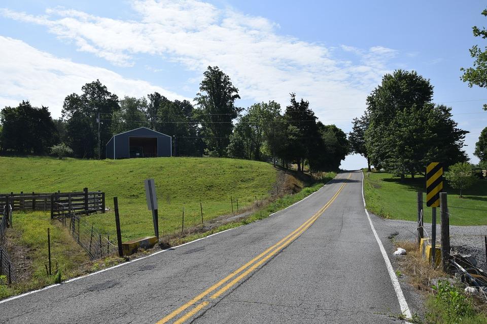 Road, Guidance, Tree, Grass, Asphalt, Landscape