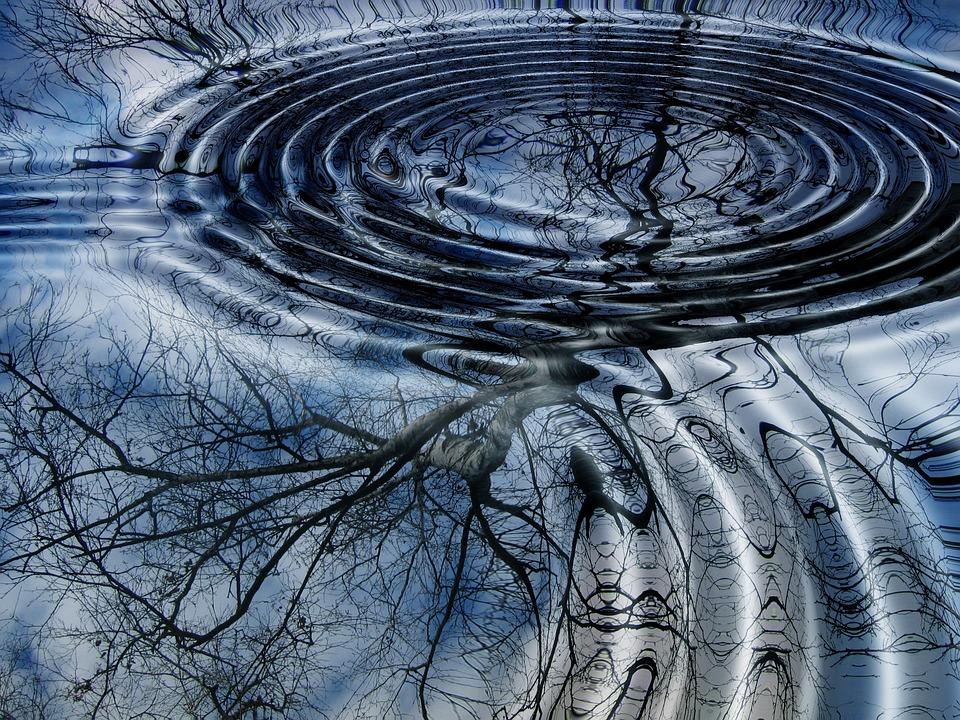 Rings, Mirroring, Water, Wave, Lake, Birch, Tree
