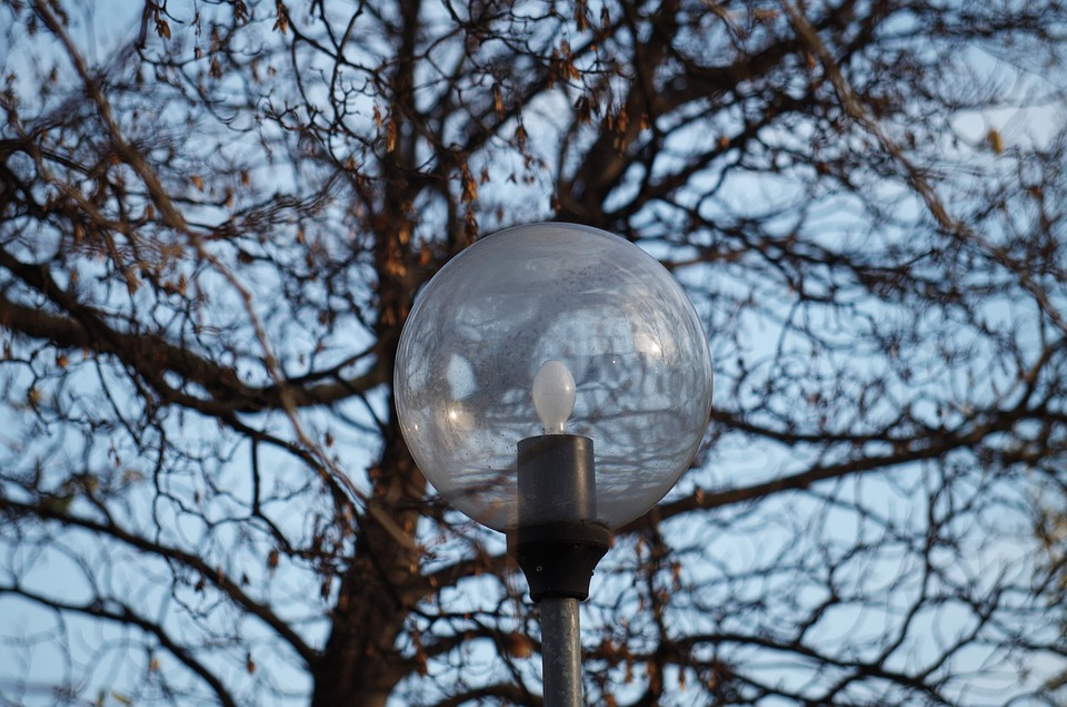 Light, Lamp, Tree, Park