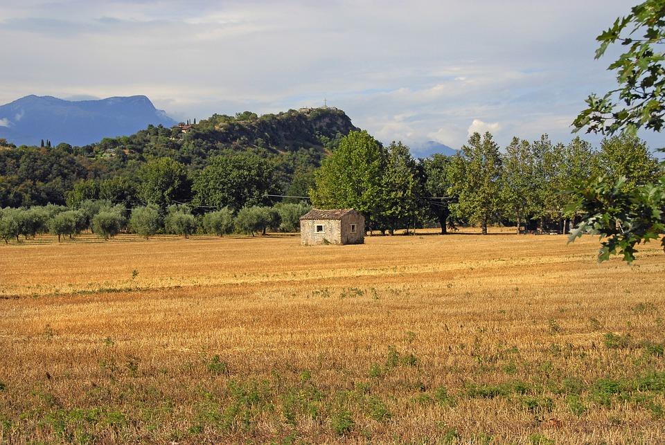 Landscape, Field, Nature, Tree, Farm