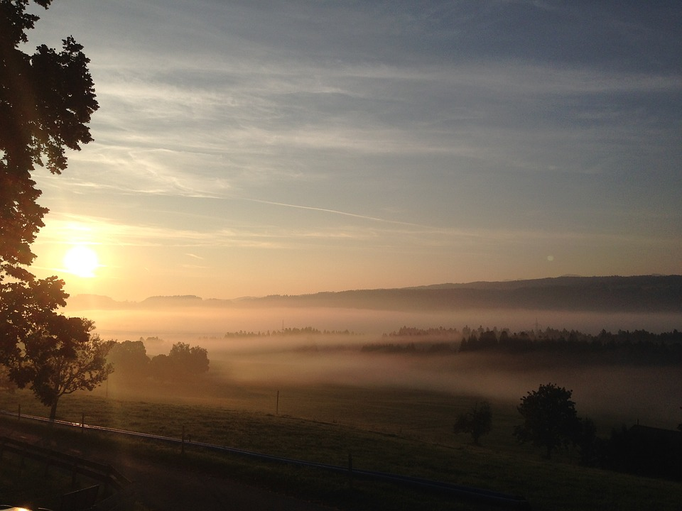 Morning, Dawn, Fog, Sunrise, Landscape, Mood, Tree