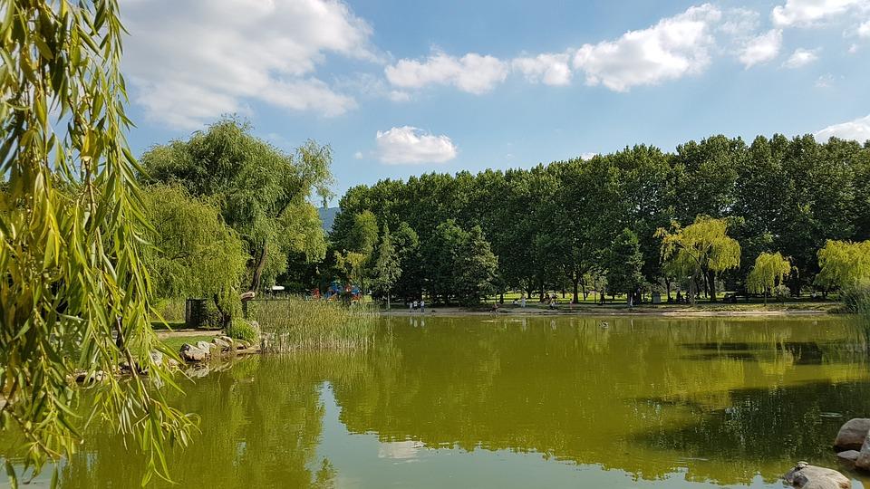 Lake, Landscape, Tree, Clouds, Turkey, Green, Light