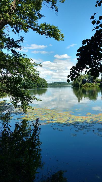 Eutin, Eutiner Lake, Mecklenburg, Nature, Tree, Waters