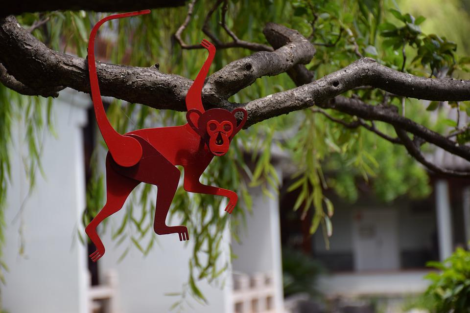 Monkey, Tree, The Year Of The Monkey, Chinese New Year