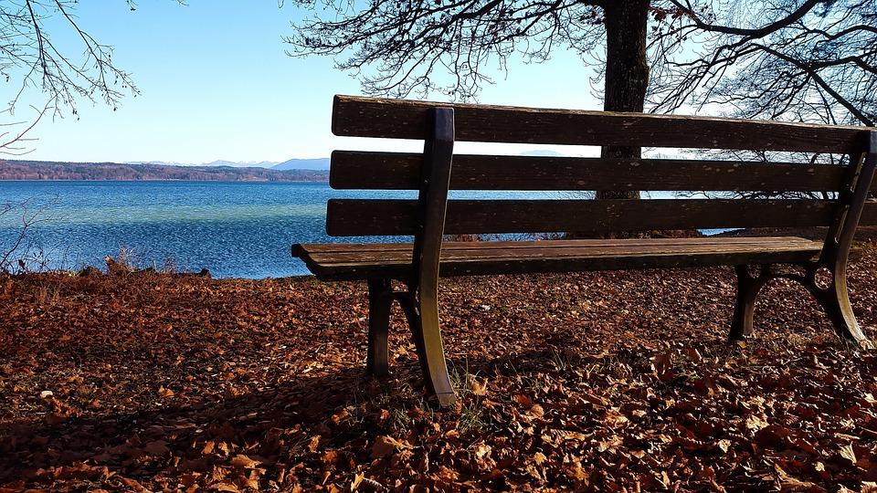 Bank, Autumn, Lake, Leaves, Park, Seasons, Nature, Tree