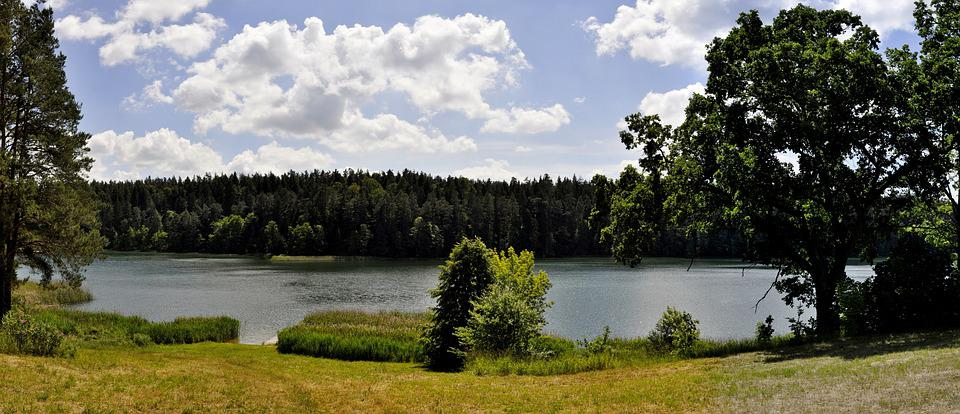 Panoramic, Nature, Tree, Monolithic Part Of The Waters