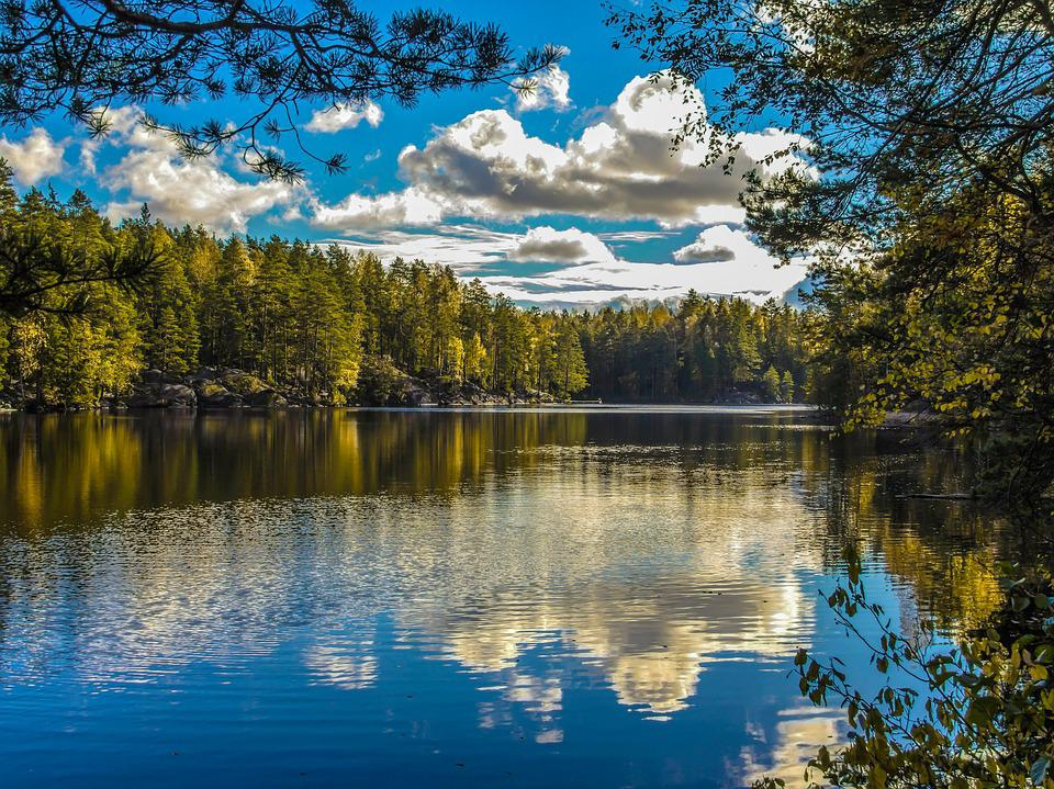 Lake, Nature, Reflection, Tree, Landscape, Forest