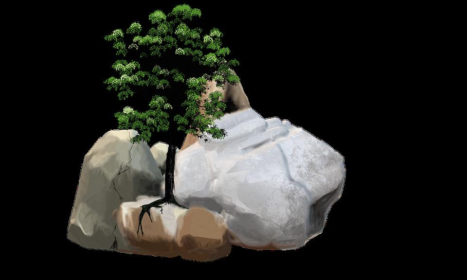Stones, Rock, Stone, Nature, Pebble, Tree, Leaves