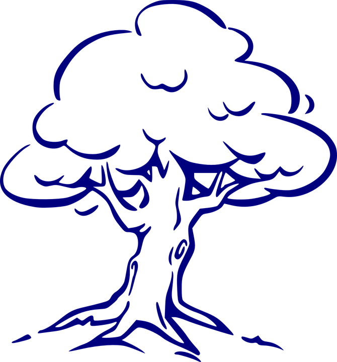 Tree, Oak, Wind, Roots, Leaves, Navy