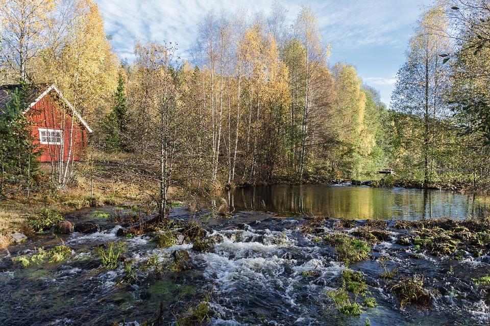 Nature, Tree, Outdoors, Landscape, Autumn, River